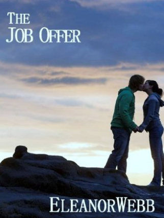 the-job-offer-book