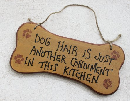 dog-hair-kitchen